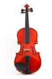 Violin upright on white backgr Stock Images