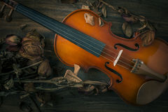 Violin in vintage style on wood background Stock Images