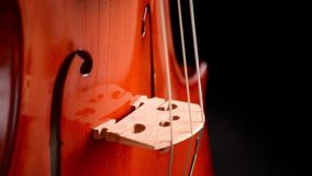 Violin or viola instrument turning at black background stock video