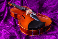 Violin on violet. Royalty Free Stock Photography