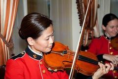 Violin, Violin Family, Viola, Violinist Stock Photo