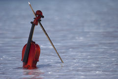 Violin in water Royalty Free Stock Photo