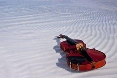 Violin in water stock image