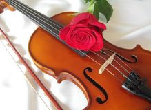 Violin. A violin on white background Stock Image