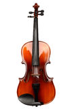 Violin. On a white background Stock Image