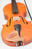 Violin on white background Stock Images