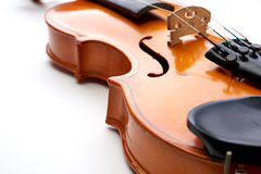 Violin on white background Stock Photos