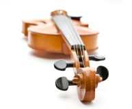 Violin on white background Stock Photography