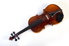 Violin front view on white. stock image