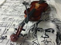 Violine被串起的乐器 免版税库存照片