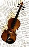 Violine Imágenes de archivo libres de regalías