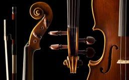 Violine Obrazy Stock