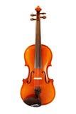 Violine Photographie stock