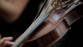 Violine stock footage