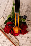 Violine auf alten Noten und rosafarbener Nahaufnahme lizenzfreie stockfotos
