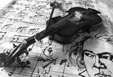 Violine czarny i biały Obraz Stock