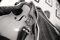 Violine falls Stockfoto