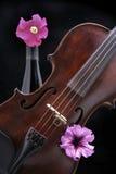Violine mit Wein-Flasche und Blumen Stockfoto