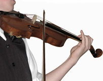 Violine player, (isolated) Stock Photo
