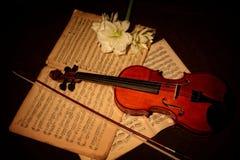 Violine und Bogen auf Musikblättern stockfotografie