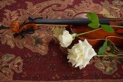 Violine und zwei weiße Rosen lizenzfreies stockfoto
