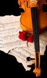 Violinen-Noten und stiegen lizenzfreie stockfotografie
