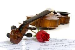 Violinen-, Rose- und Blattmusik lizenzfreies stockfoto
