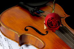 Violinen-, Rose- und Blattmusik stockfotografie