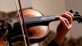 Violinennahaufnahme, Hände, Mädchenspielen