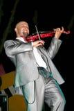 Violinenspieler Lizenzfreies Stockfoto