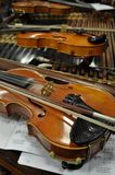 Violines Royalty Free Stock Photo