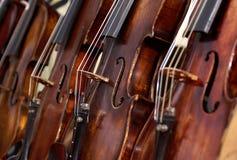 Violini Fotografia Stock