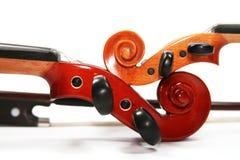 Violini isolati su una priorità bassa bianca Immagine Stock