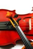 Violini isolati su una priorità bassa bianca Fotografia Stock
