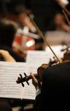 violinist Royaltyfria Foton