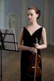 violinist royaltyfri fotografi
