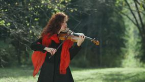 Violinist in the autumn forest. Girl playing on the violin in nature stock video footage