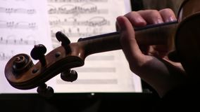Violinist hands playing violin orchestra musical instrument. On music notes background stock video
