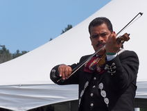 Violinist In Mariachi Band Stock Images