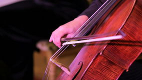 Violinist Musician Playing The Cello stock video footage