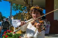 Violinist på den Landis dalen Fotografering för Bildbyråer