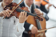 Violinist performing with orchestra Stock Images