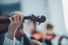 Violinist performing with orchestra Stock Photography