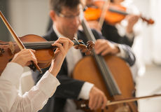 Violinist performing with orchestra royalty free stock images