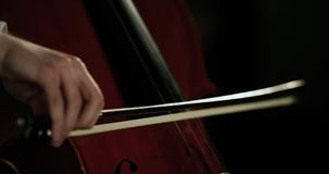 Violinist Plays Beautifully Handdetails 4K stock video footage