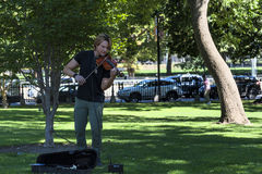 Violinist plays in Boston Public Gardens. Boston, Massachusetts, USA - September 12, 2016: A male violinist play classical music in Boston Public Gardens in Stock Photo