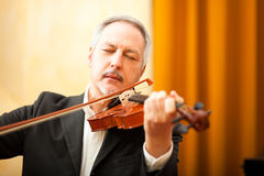 Violinist portrait Royalty Free Stock Image