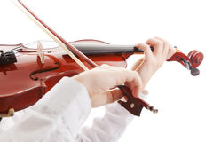 Violinist Royalty Free Stock Photo