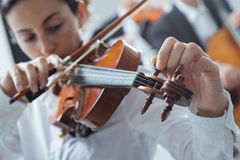 Violinist tuning a violin Stock Images