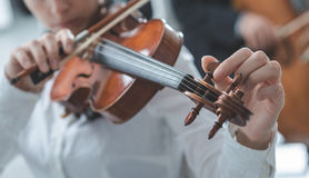 Violinist tuning a violin Stock Photos